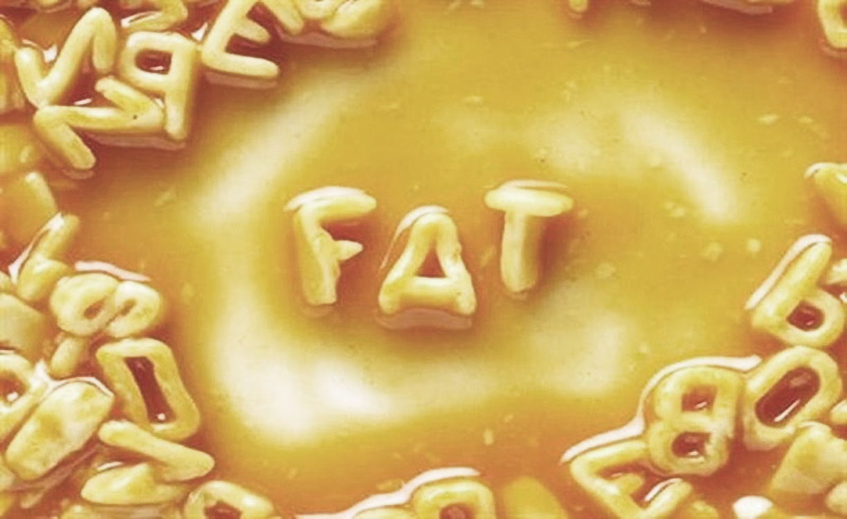 Our Love Hate Relationship With Fat: What Fat Is Good For?