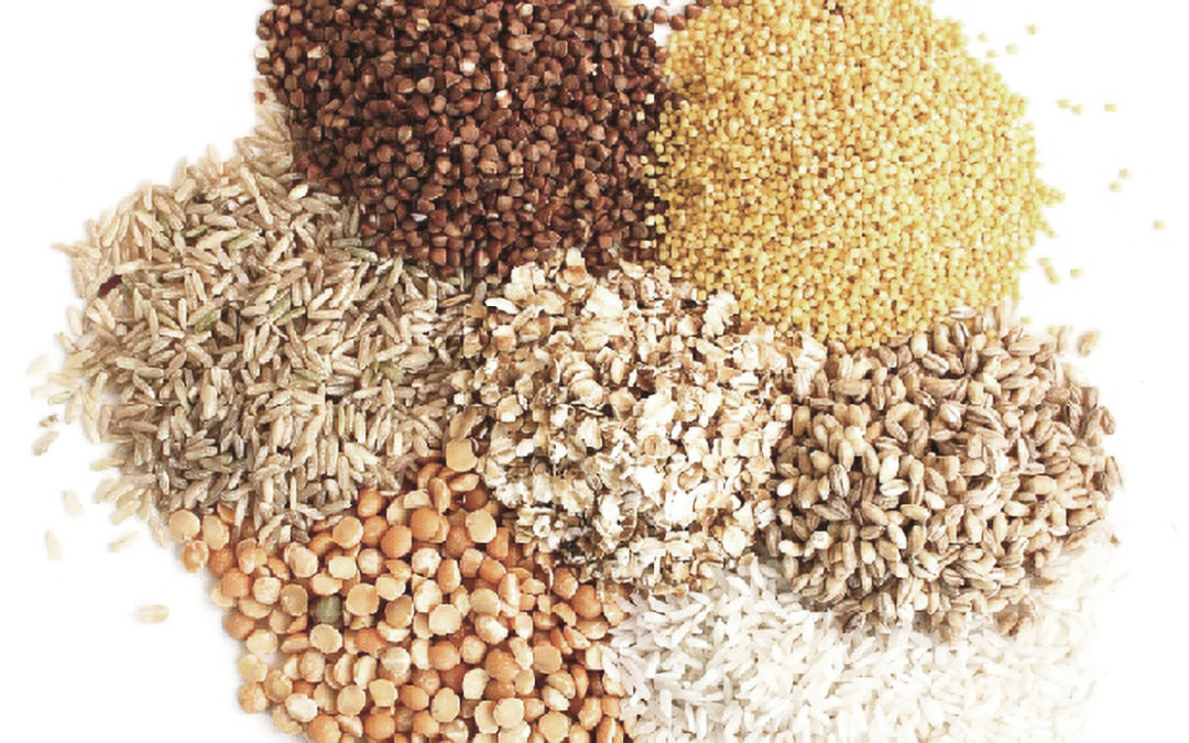 Grains: What's The Fuss About
