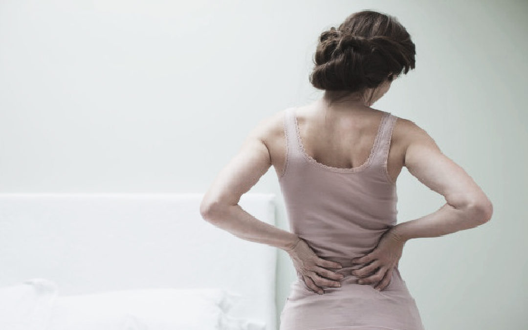 Back Pain: Foods That Cause Inflammation