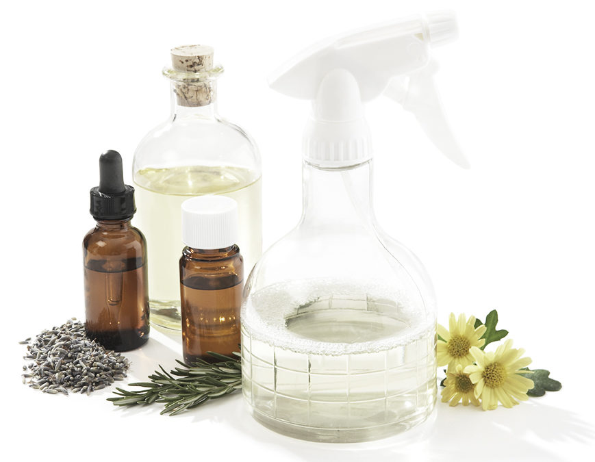 Home Detoxification Series: Common Household Products