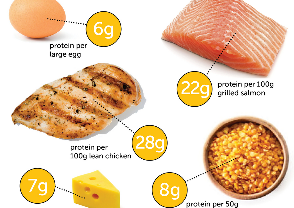 How Much Protein do I Need Per Day?